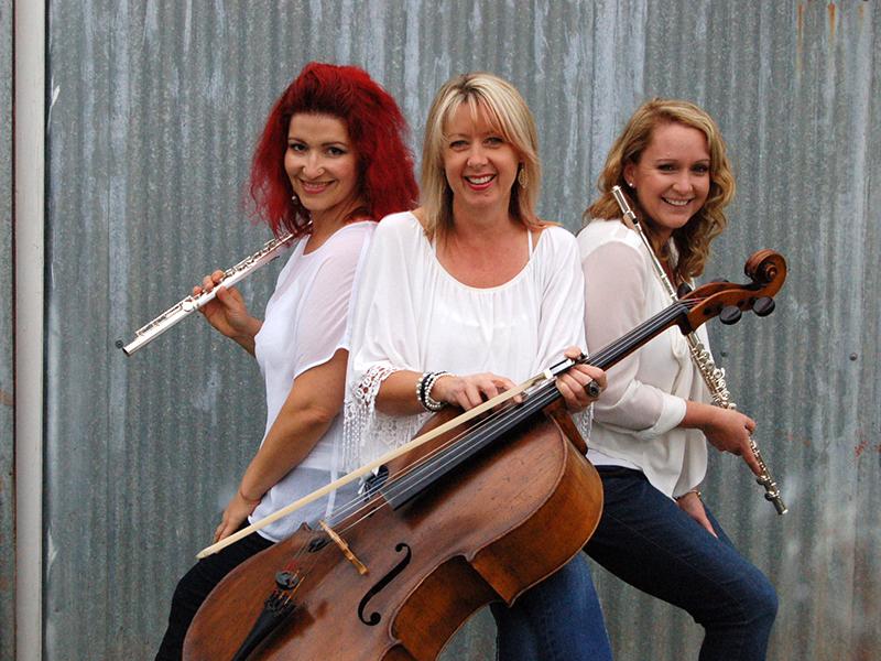 onfetti Music Ensemble Hawkes Bay