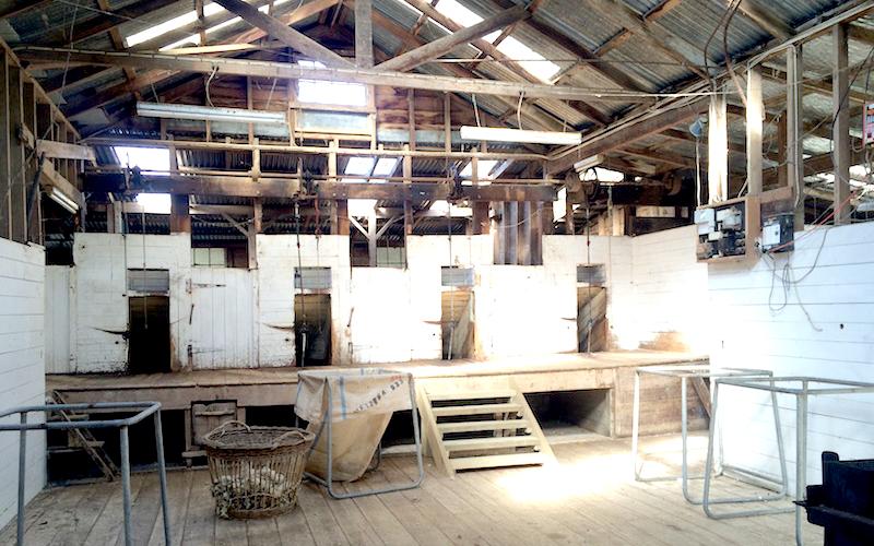 Barn Venue at Punawaitai